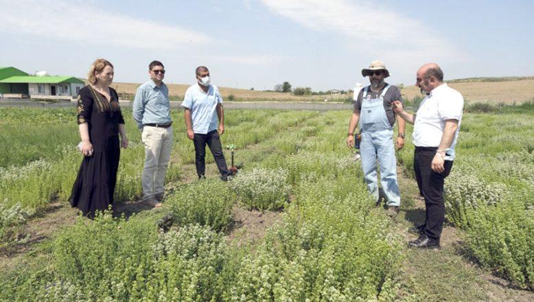 İyi tarım uygulamasını incelediler