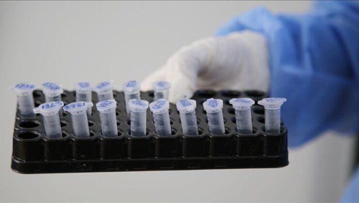 Kuzey Makedonya'da Hindistan Mutasyonlu Virüs Tespit Edildi