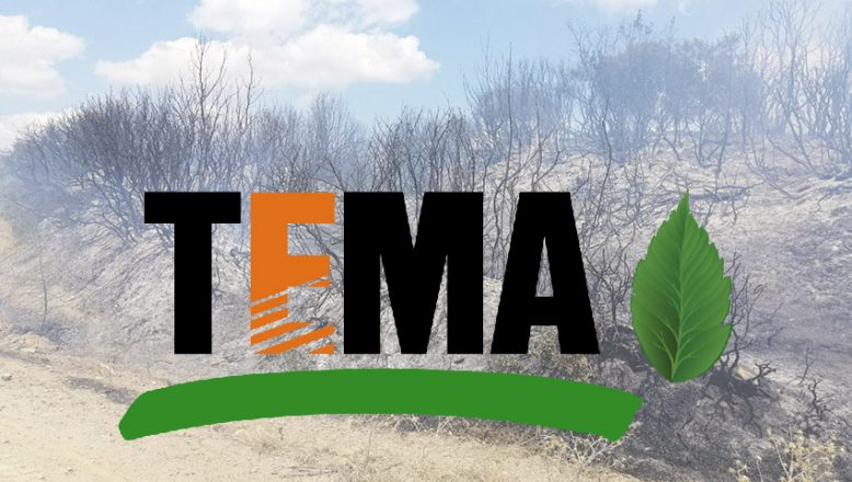 TEMA'dan yanan ormanlar için kampanya