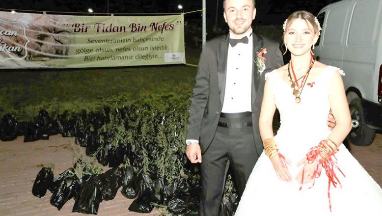 Düğün davetlilerine fidan hediye edildi