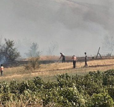 Koçana'daki yangın kontrol altına alındı