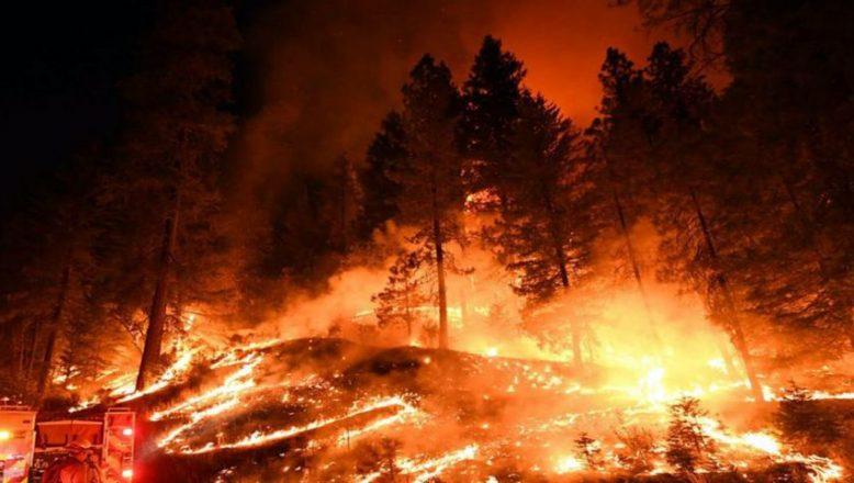 Yunanistan'daki yangın felaketi büyüyor!