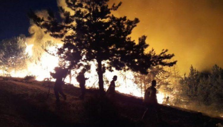 Kuzey Makedonya'da orman yangınları nedeniyle kriz durumu ilan edildi