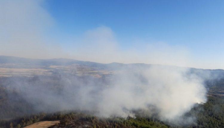 Kuzey Makedonya'da orman yangınları sürüyor