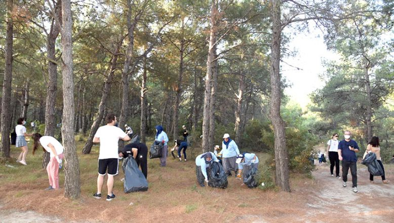 Ormandan 10 kamyon çöp topladılar
