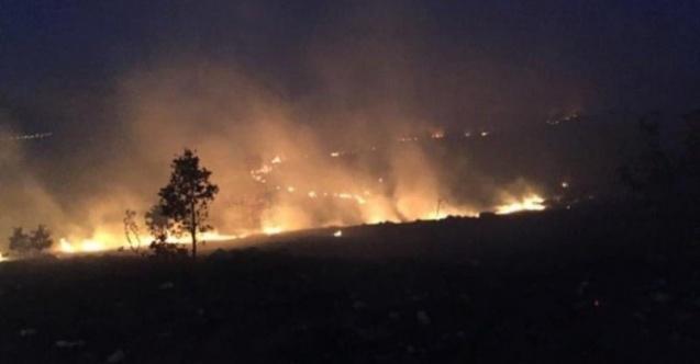 Arnavutluk'ta üç bin hektar alan yandı