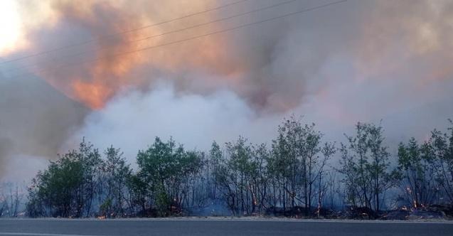 Balkanlar, son on yılın en büyük orman yangınlarıyla karşı karşıya