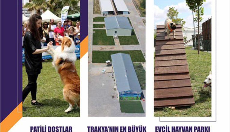 Trakya Pet Fest 2 Ekim'de başlıyor