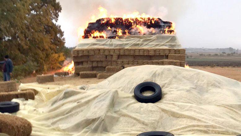 Yıldırım isabet eden 500 saman balyası yandı