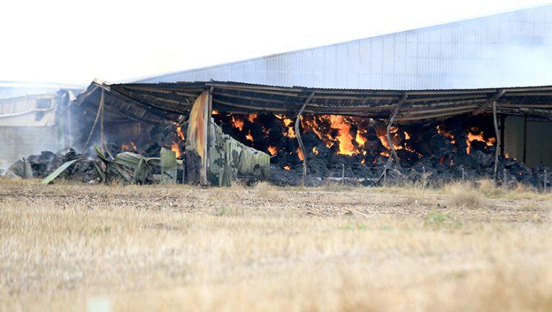 Besi çiftliğindeki yangını söndürme çalışmaları sürüyor