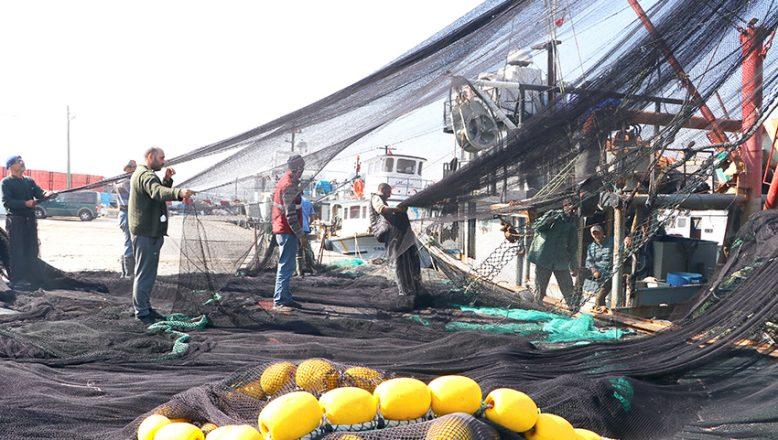 Marmara'da, lüfer peşindeler